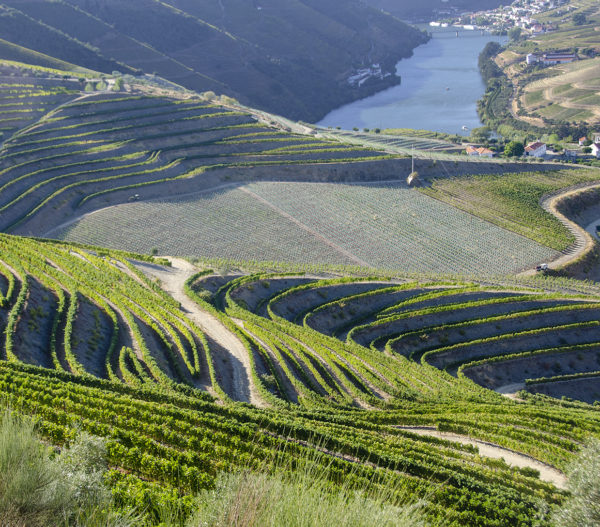 Dourovallei met wijnhellingen bij Pinhão